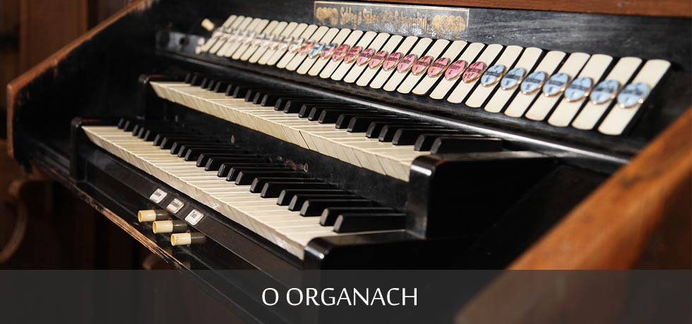 O organach